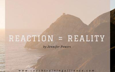 Reaction = Reality